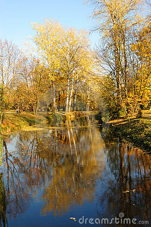 Free Sunset In A Park With Tree Reflection On The Water Royalty Free Stock Photo - 11605405