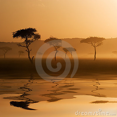 Free Sunset In Massai Mara Royalty Free Stock Images - 2473689