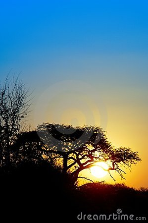 Sunset in the Kalahari