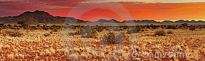 Sunset in Kalahari Desert