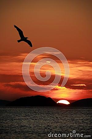 Sunset on Kornati