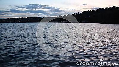 Sunset on Lake Washington, Seattle, USA stock video footage