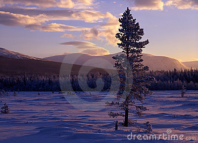 Sunset landscape in winter