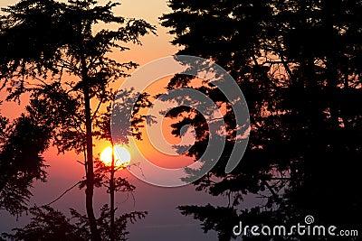 Sunset at Monteverde Cloud Forest Reserve