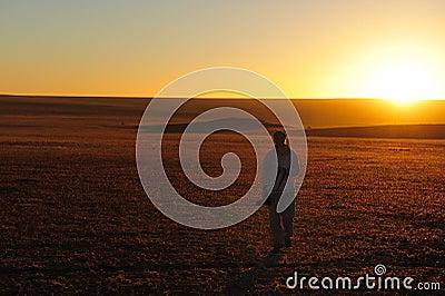 Sunset in the Namib (Namibia)