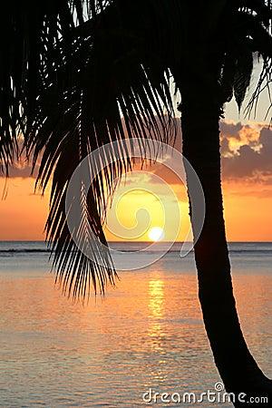 Free Sunset On Paradise Island Royalty Free Stock Photography - 270947