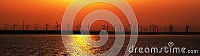 Sunset over coastal wind farm