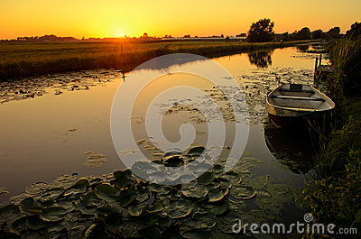 Sunset over a ditch with a boat and waterlily