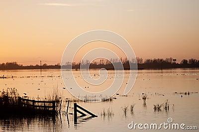 Sunset over flooded wetlands.