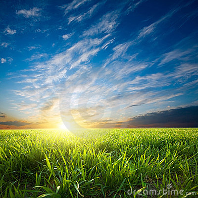 Free Sunset Over Green Crops Royalty Free Stock Photos - 9966648