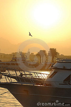 Free Sunset Over Harbor In Egypt Royalty Free Stock Image - 3585476