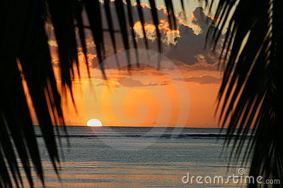 Sunset over Mauritius with palms framing the sunset