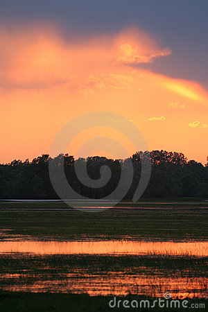 Free Sunset Over Meadow Royalty Free Stock Photo - 5252335