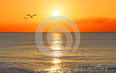 Sunset over an ocean