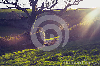 Sunset over an old stone gate in rural landscape