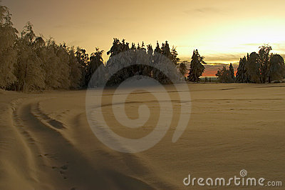 Sunset over snowy countryside