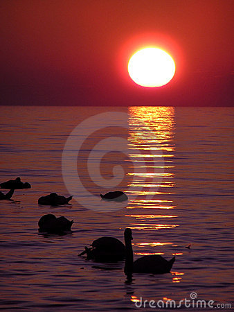 Free Sunset Over Water Royalty Free Stock Photography - 2185747