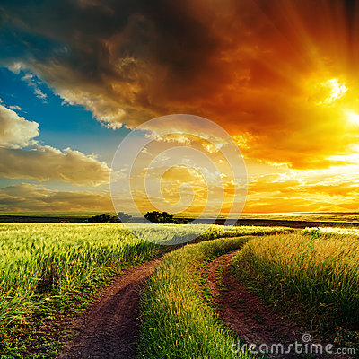 Sunset over winding road in field