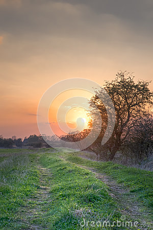 Sunset path