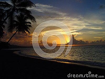 Sunset Perfection 1