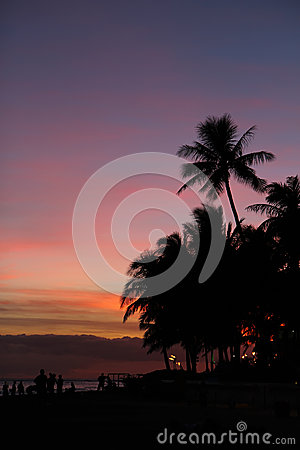 Sunset silhouettes on Waikiki Beach, Oahu, Hawaii