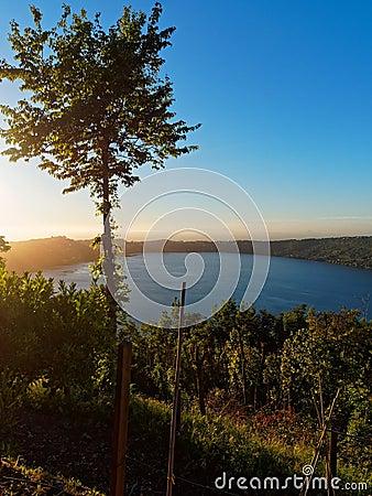 Free Sunset Sunrise Lake Royalty Free Stock Image - 96852786
