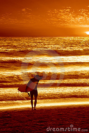 Free Sunset Surfer Royalty Free Stock Photography - 2320737