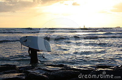 Sunset surfer in Honolulu