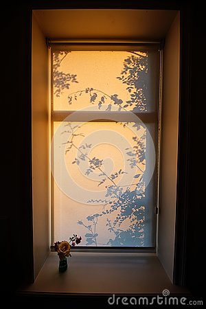 Free Sunset Through The Window Royalty Free Stock Photo - 157768465