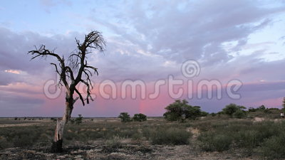 Sunset time lapse. Time lapse of a sunset with clouds over the Kalahari desert, South Africa stock video