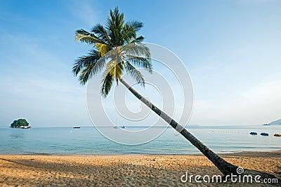 Sunset in Tioman island, Malaysia