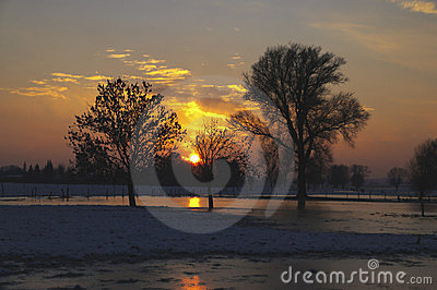 Sunset between trees and with snowy surface
