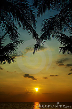 Sunset in tropics
