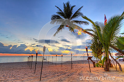 Sunset under tropical palm tree on the beach