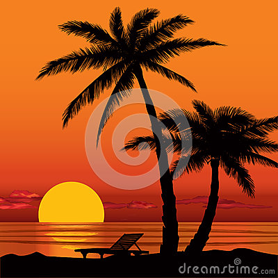 Sunset View In Beach With Palm Tree Silhouette Stock Image
