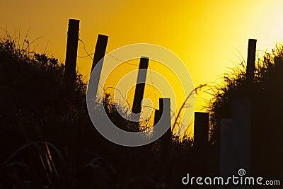 Sunset walkway