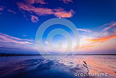 SUNSET wetland WITH PURPLE SKY