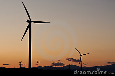 The sunset in a wind farm