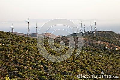 Sunset in a wind farm