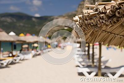The sunshade umbrella