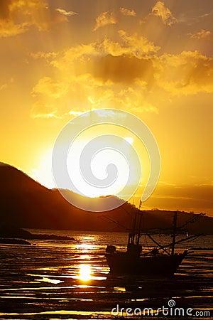 Free Sunshine Royalty Free Stock Photos - 15957598