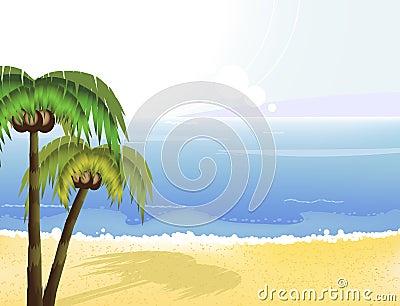 Sunshine coast and coconut palms