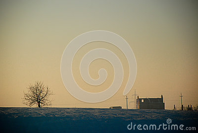 Sunshine house and tree
