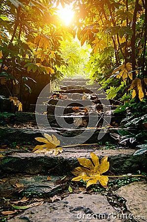 Free Sunshine Stone Stairs Stock Images - 71059814