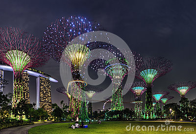 Super Trees Night Scene at Singapore Gardens by the Bay