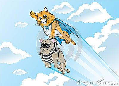 Superhero kitty
