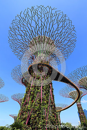 The Supertrees Grove at Gardens by the Bay Editorial Image