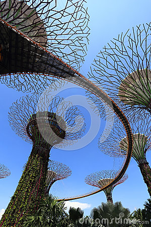 The Supertrees Grove at Gardens by the Bay Editorial Stock Photo