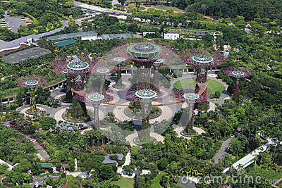The Supertrees Grove at Gardens by the Bay Editorial Photo