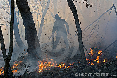 Suppression of Forest Fire 21